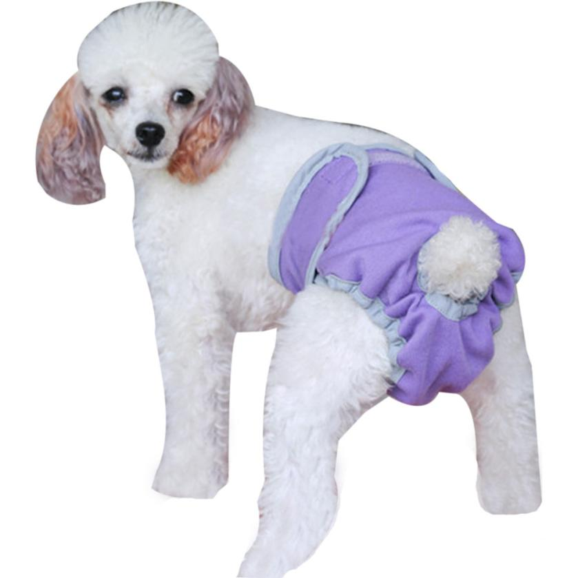 Attractive Cool Lovely Washable Diapers Sanitary Male Dog