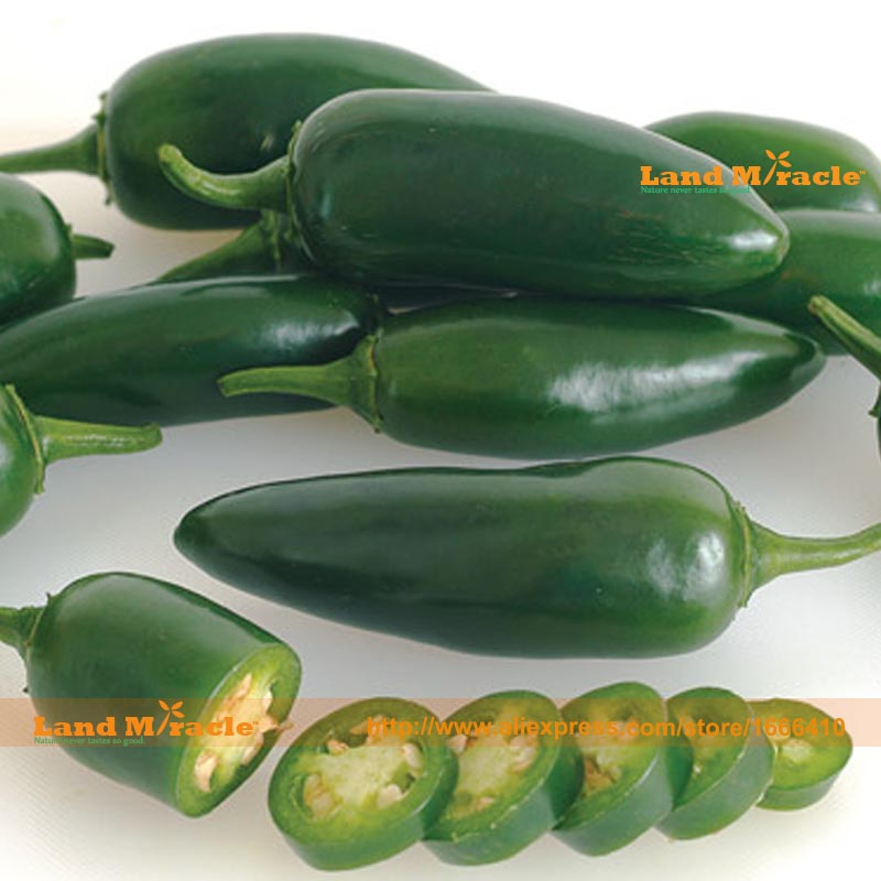 Vergelijk prijzen op Paprika Plants - Online winkelen ...  Jalapeno
