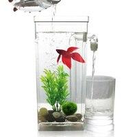 Quail 9 Inch Aquarium,Fish Tank,Plastic,Tabletop Fish Tank,Self cleaning