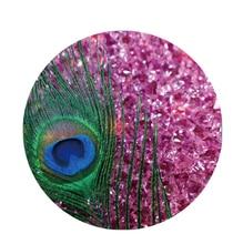 Peacock Feather Pop Socket