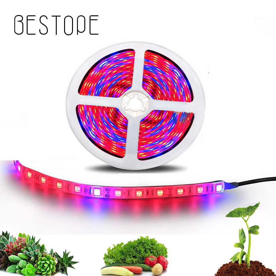 DC 12V LED Grow Light 2M 3M 5M LED Strip Light Flexible Tape 5050 LED Phyto Plant Growth Lamps For Greenhouse Hydroponic Plant G