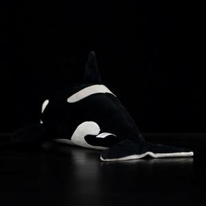 Image 3 - Jouets vivants orques Extra doux, 15 pouces, jouets de baleine tueur en peluche pour enfants, jouet de vie océanique, cadeaux danniversaire