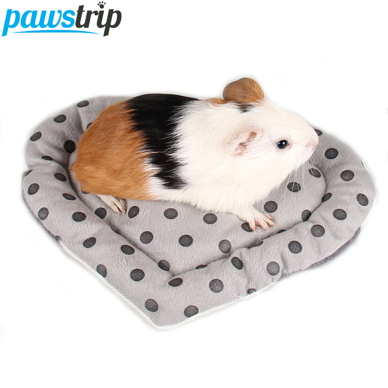 top 9 most popular rabbit guinea pig list and get free