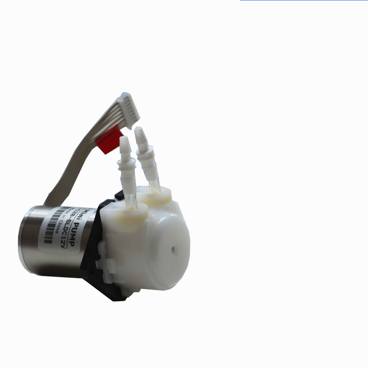 ФОТО Adjustable speed brushless motor micro miniature peristaltic pump titration dosing pumps YW01 pumps