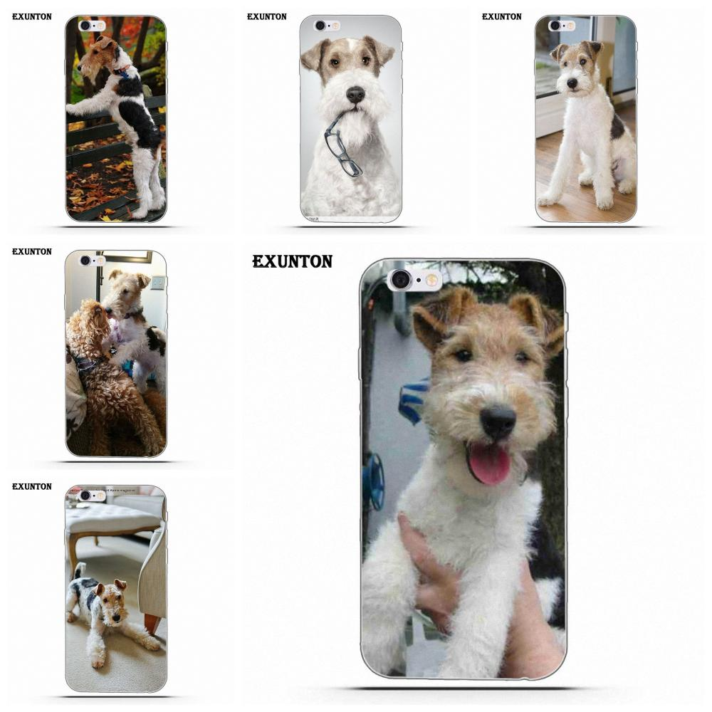 Online Shop for fox terrier wire Wholesale with Best Price