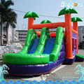 3 In 1 Inflatable Bouncer Water Slide With Pool For Sale