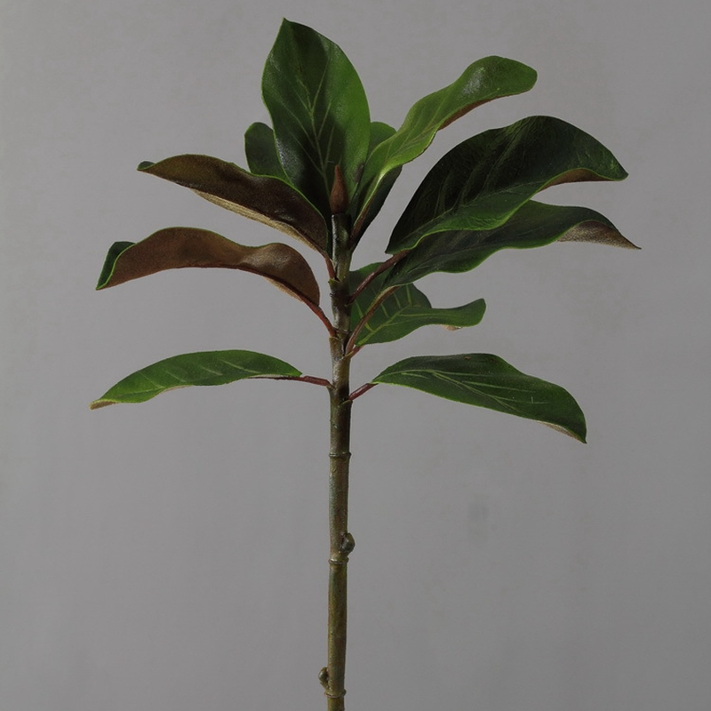 6pcs 61cm 고급 시뮬레이션 yulan kapok 잎 꽃꽂이 식물 벽 재료 상류층 홈 녹색 장식 인공-에서인공 & 건조 꽃부터 홈 & 가든 의  그룹 3
