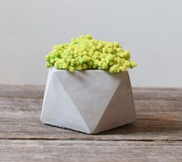 Silicone Mold New Geometric Flower Pots Concrete Cement 3d Vase Handmade Flowers Simple Multi Flower Pot