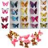 15 Colors 12pcs/lot Butterfly 3D  3