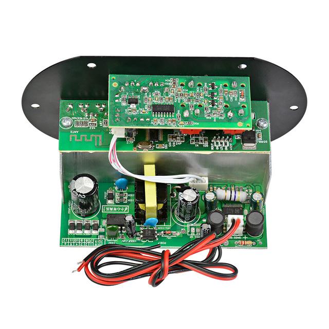 AIYIMA Mono Subwoofer Amplifier Board Dual Microphone K Song Bluetooth Amplifier 30-150W For 6-10Inch Speaker 220V 12V 24V