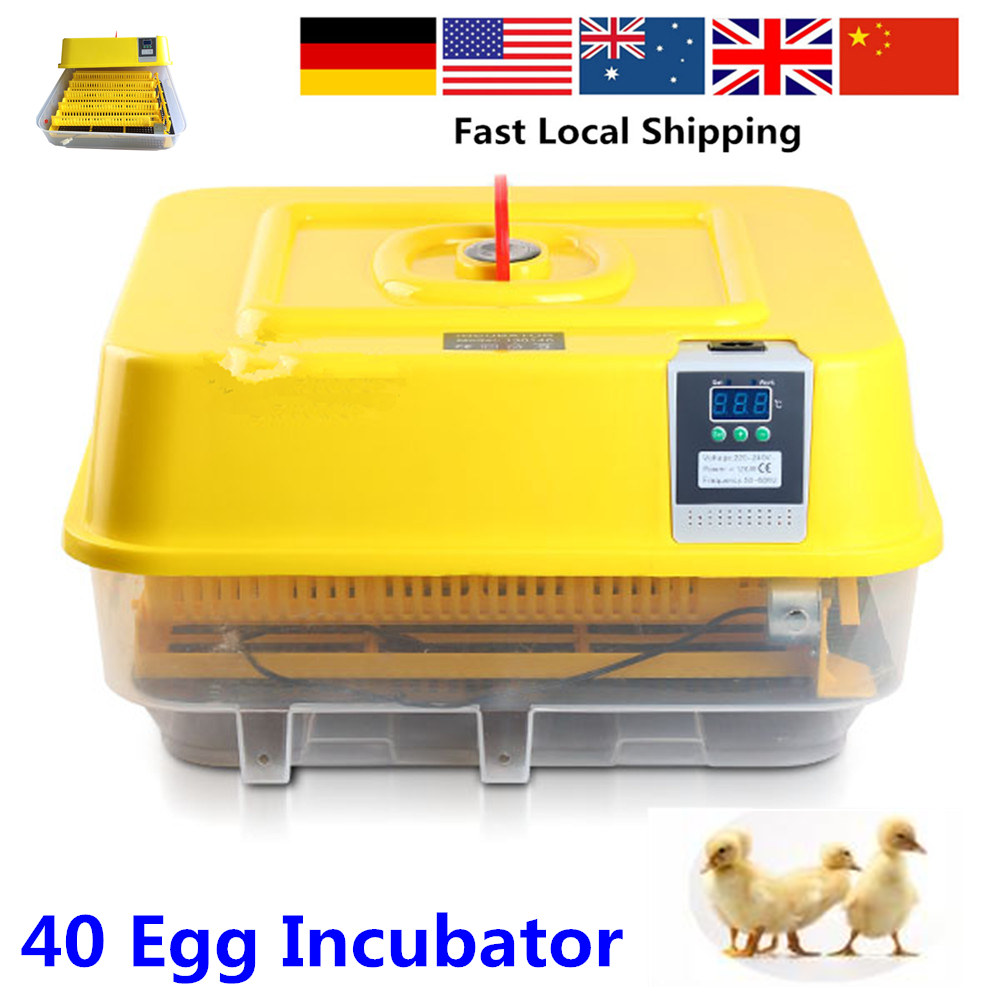 Local Fast Shipment New 220V poultry egg incubator full automatic 96 chicken egg hatching machine With CE standard approved small chicken poultry hatchery machines 48 automatic egg incubator 220v hatching for sale