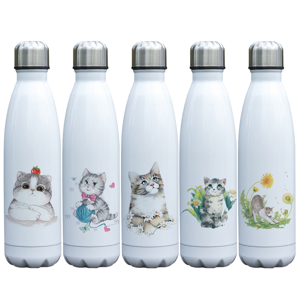 17 oz Double Wall Vacuum Insulated Stainless Steel Water Bottle Beach Please