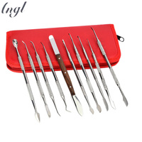 New 10Pcs Set Stainless Steel Wax Carving Dentist Surgical Dental Lab Kit Teeth Tool Set
