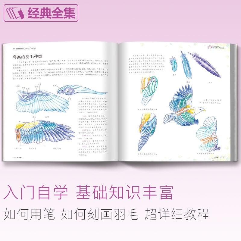 desenho tutorial livro arte realmente pintados 02