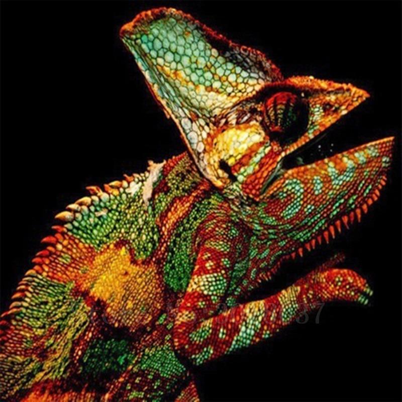 Diy 5D Diamond schilderij Cross Stitch kleurrijke hagedis Diamond - Kunsten, ambachten en naaien