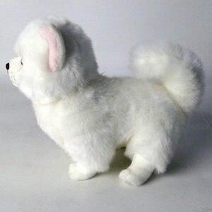 Image 5 - Peluche Pomerania cane bambola cane di Simulazione giocattoli animali di peluche super Realistico giocattolo del cane per gli amanti degli animali di lusso della decorazione della casa da neve bianco