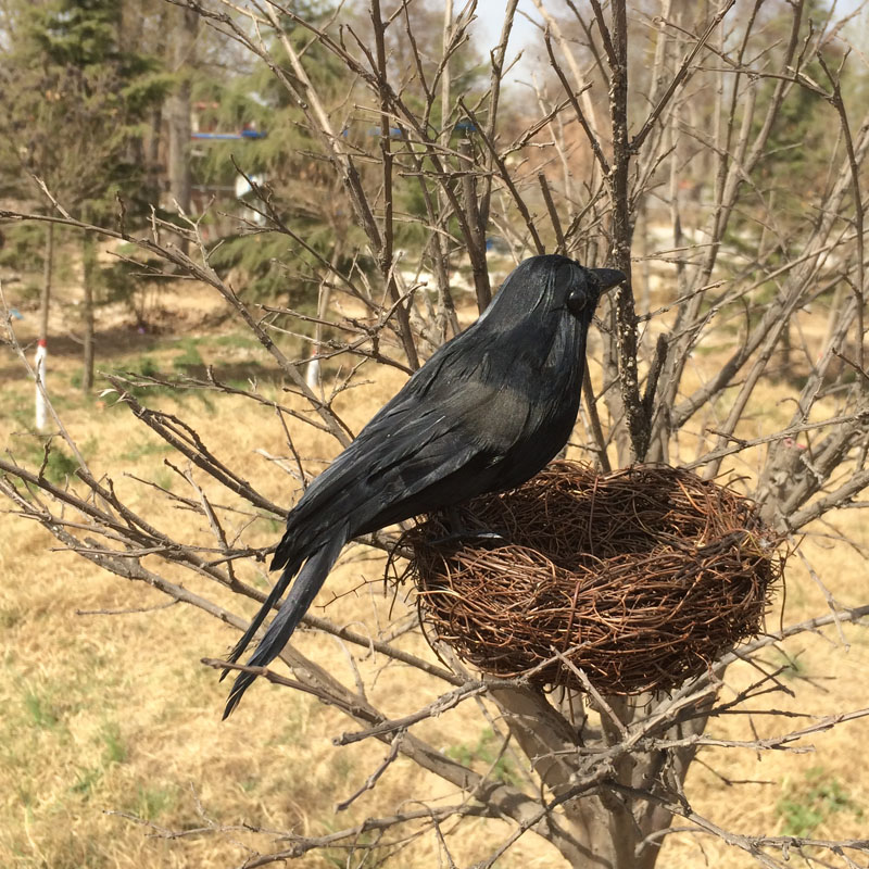 20cm simulation bird feathers crow toy model Halloween display specimen decoration gift