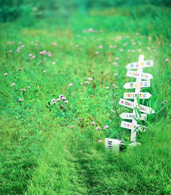 Grass and flowers background Flowers And Tree Tr Spring Nature Scenery Backdrop Green Grass Meadow Flowers Background For Wedding Photo Studio Backdrop Baby Children Backdrop Aliexpress Tr Spring Nature Scenery Backdrop Green Grass Meadow Flowers