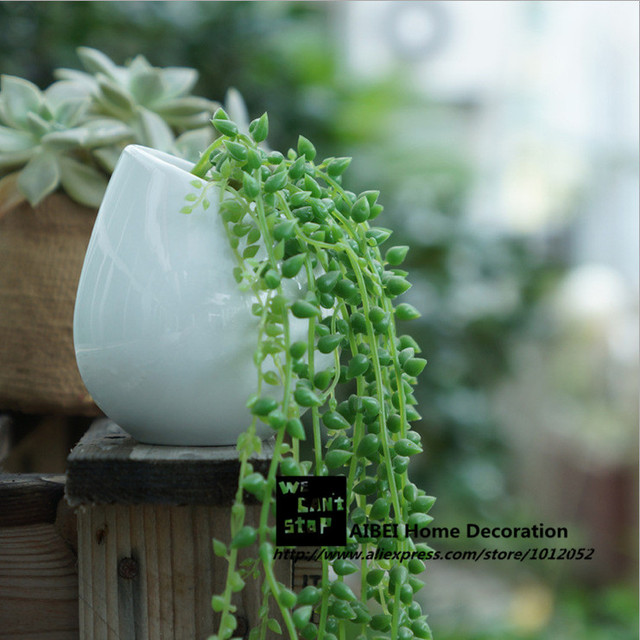 AIBEI-ZAKKA Ceramic Wall Pots 1PC White Vase Hanging Hydroponic Vertical Garden fleshy Flower Pots Planters