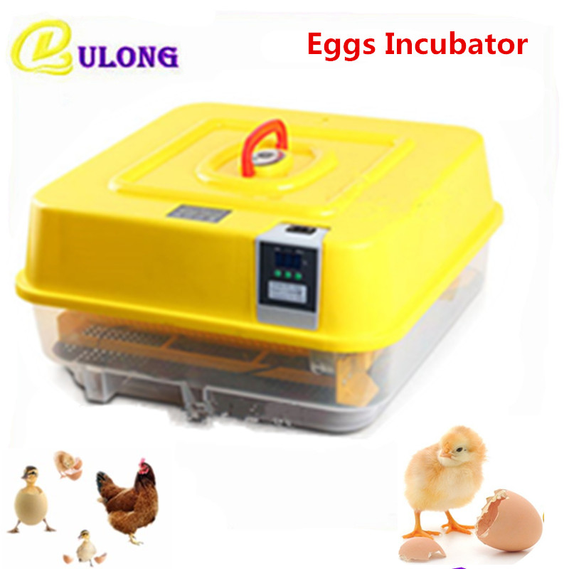 Digital Automatic Hatchers for Quail Eggs Mini Multifunctional Eggs Turner Chicken Brooder Hatching Machine mini home use eggs incubators chicken digital eggs turner hatchers hatching tray machine equipment tool