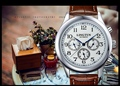 Elegant Stylish Business men Fashion Automatic Dress Watches Self Wind Genuine Leather Waterproof Business Clock Calendar NW4762