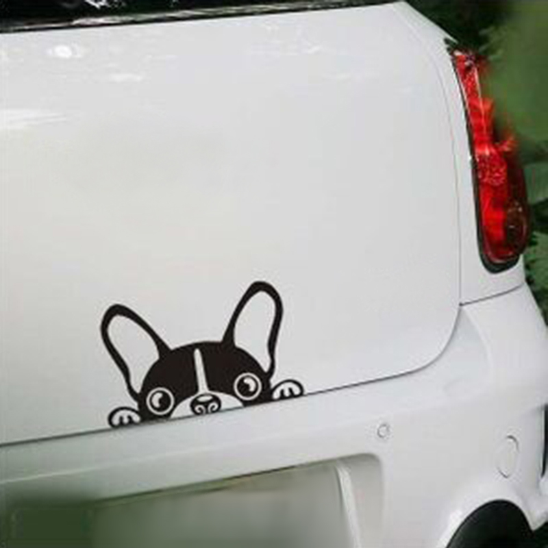 Cute Car Stickers Kamos Sticker - Stickers for the car