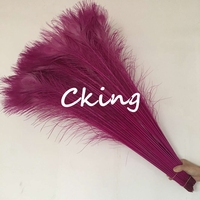 100pcs natural fuchsia peacock tails Feather 25cm to 90cm long DIY Peacock plumes for carnival accessorys