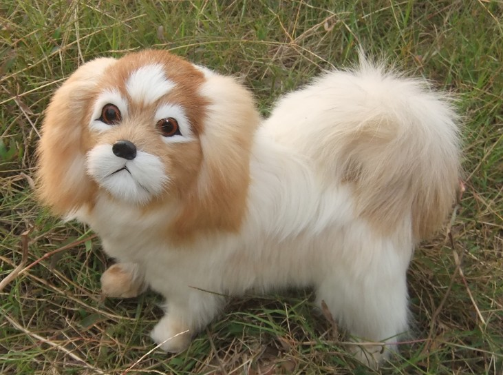 The Best Simulation Pekingese Dog About 15x13cm Furry Fur Hard Model Home Decoration Christmas Gift H1173 Toys & Hobbies