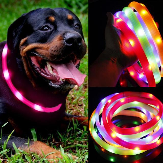 Impermeabile USB Ricaricabile Collare Dell'animale Domestico LED Lampeggiante In
