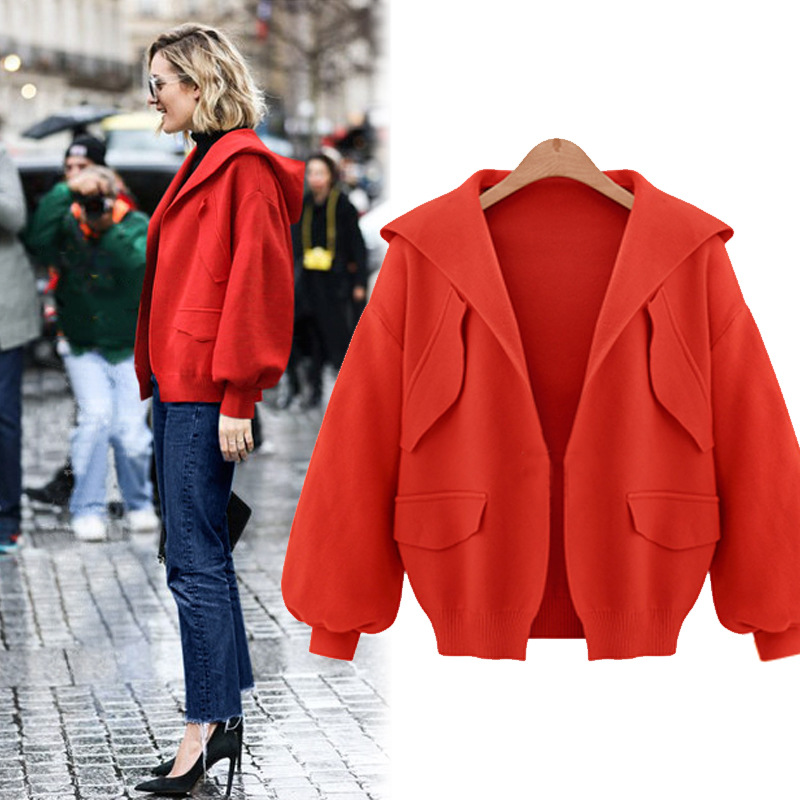 New Loose Wild Short Paragraph Hooded Jacket Autumn Solid Color Long-sleeved Temperament Simple Sweet Beautiful Jacket Thick