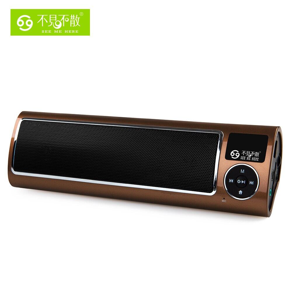 LV520-iii Radio Portable haut-parleur MP3 Lecteur Spécial pour Olders avec fort et Son De Haute Qualité Support USB Disque et TF carte