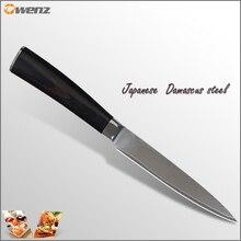 Beste Aus-10 damaskus messer 5 zoll universalmesser mit farbe griff 71 schichten von damaststahl küchenmesser Doppel stahl kopf