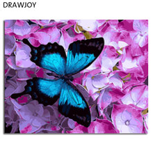 DRAWJOY Framed Picture DIY Painting By Numbers Oil Painting Of Butterfly and Flower Home Decor For Living Room 40*50cm GX21627(China)