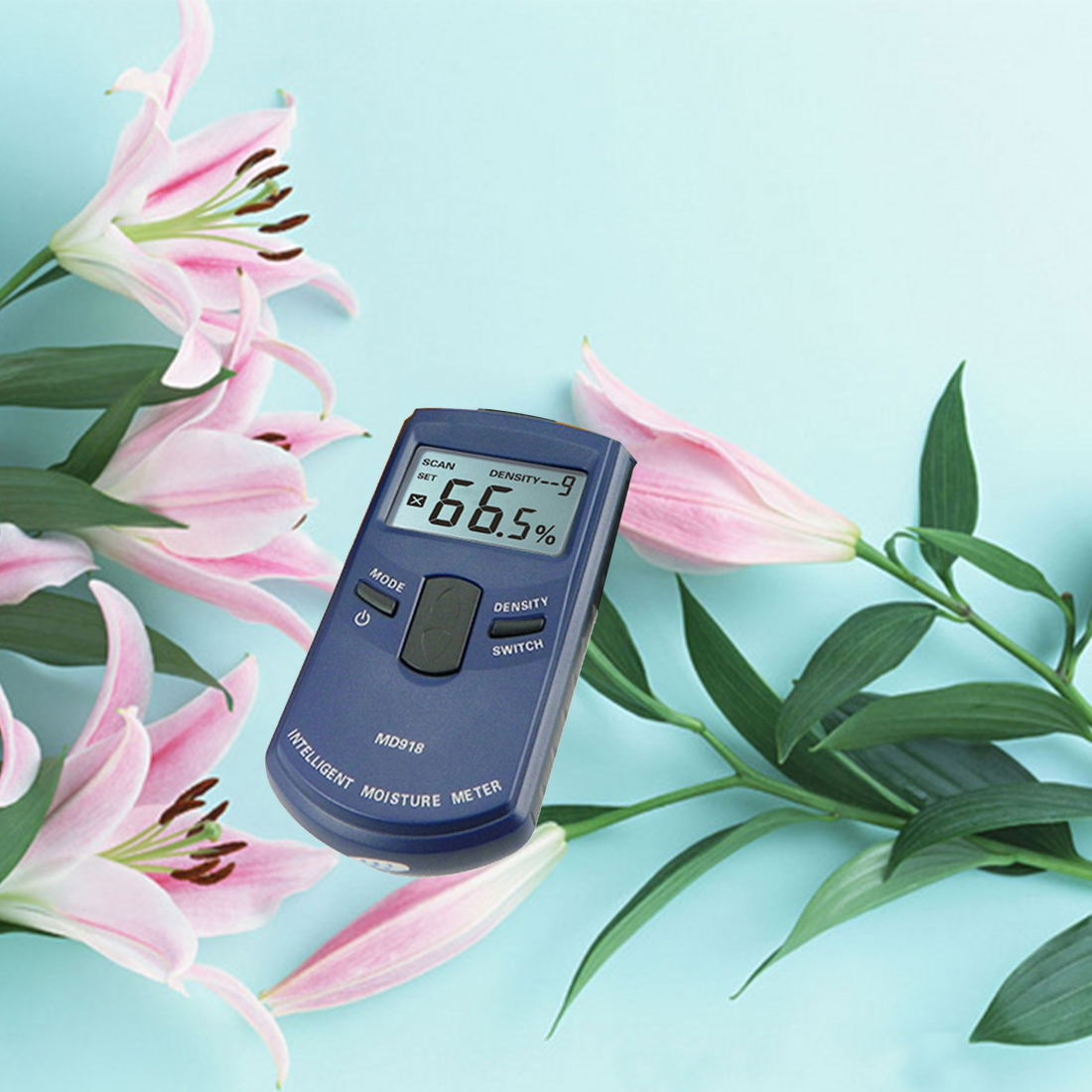 High Digital Multi-Functional Wood Moisture Meter 10 Grades Of Wood Density Tester Accuracy 1% spelling grades 1 2