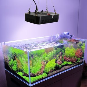 Image 5 - Fish & Aquatic Supplies Lightings 140W Aquarium lights led reef lighting Dimming lamp Coral lights For Fish tank Low noise