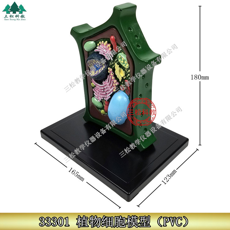 Plant Cell Model Plant Microscopic Specimens Magnified Cell Structure Bio-teaching Model Display UtensilsPlant Cell Model Plant Microscopic Specimens Magnified Cell Structure Bio-teaching Model Display Utensils