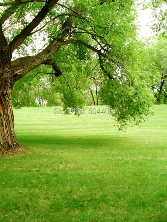 Buy 5x10ft flowers photo background trees for Garden trees photos