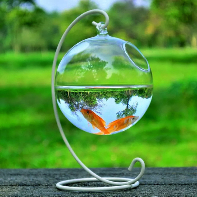 Cute Clear Round Shape Hanging Glass Aquarium Fish Bowl Fish Tank