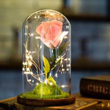 USB Glowing Immortal Rose in Glass Bottle Artificial Beauty Rose Flower for Valentine's Day Love Gifts Home Desktop Decoration(China)