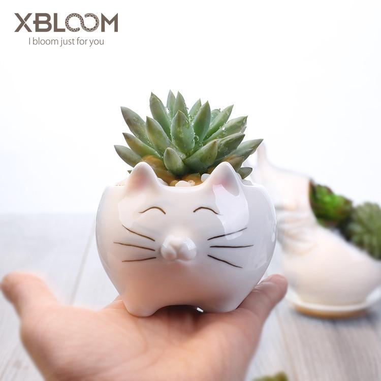 Cartoon Cat Polar Bear Penguin Ceramic Flower Pot Vase Home Desktop Flowerpot Fortune Cat Statue Sticker Birthday Wedding Gift