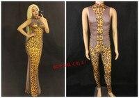WOMEN MEN NEW Sexy Leopard Pattern Mesh Dress Sleeveless Cheongsam Long Dress Women's Birthday Party Outfit Female Stage Wear