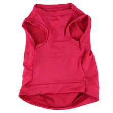 Princess Vest For Small Dogs