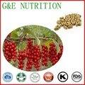 500 mg x 400 pcs Top grad Frutas Magnoliavine Chinês/Schisandra chinensis Cápsula com frete grátis