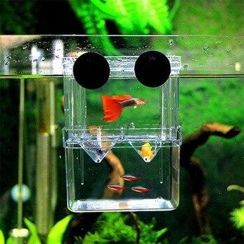 Multifunctional  High Clear Fish Breeding Isolation Box Aquarium Breeder Fish Tank Double Guppies Hatching Incubator 1