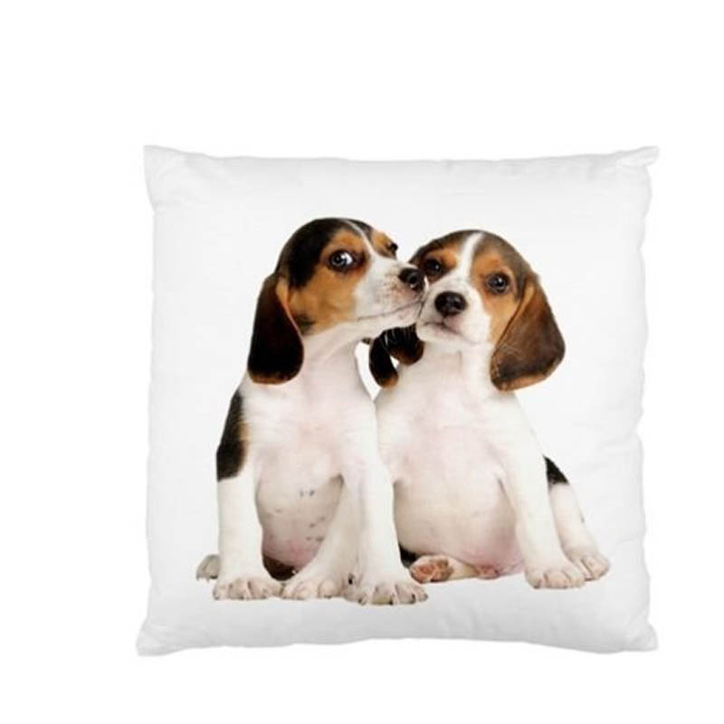 popular beagles for sell buy cheap beagles for sell lots best sofa material for pets best fabric couch for pets