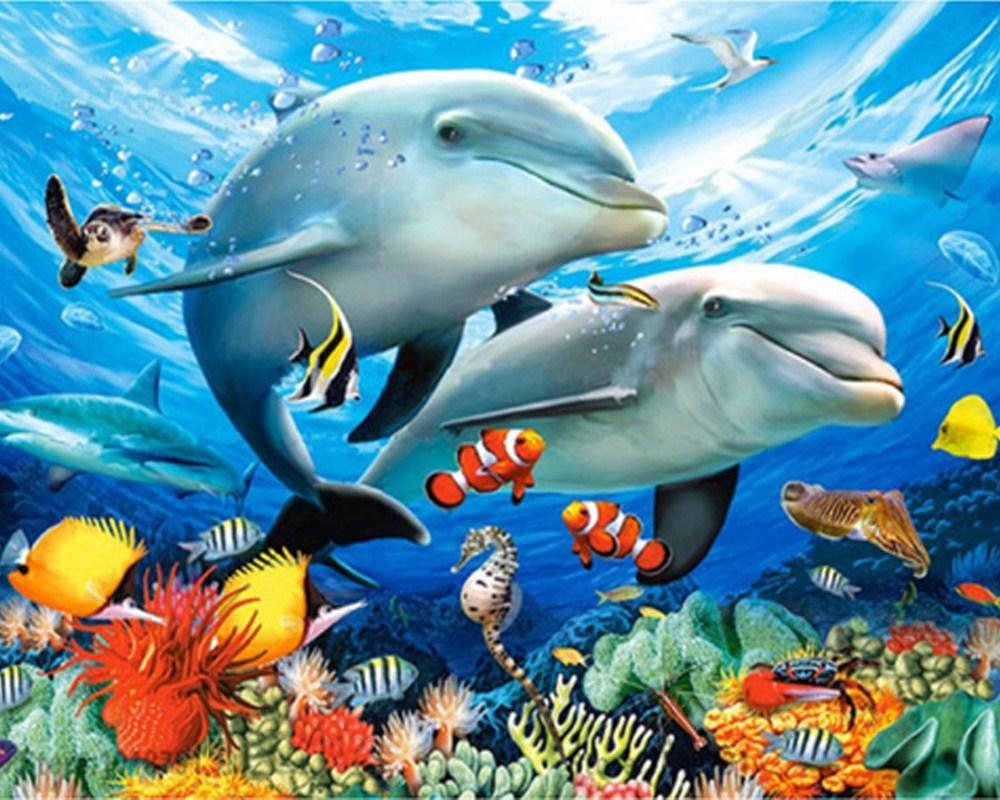 Картинки с морскими животными для детей, ракета мая