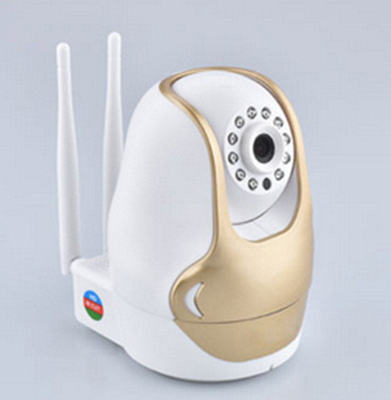 Free Video Intercom Wireless IP Camera With Alarm Function