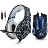 Headset and Mice 1