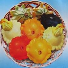 20 nutritious squash Pattypan Tricolor seeds vegetable