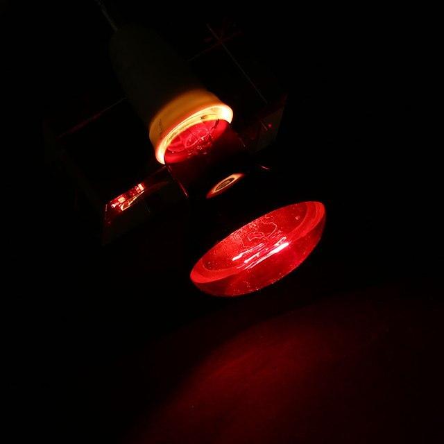 Reptile Pet Heating Light Bulb 4